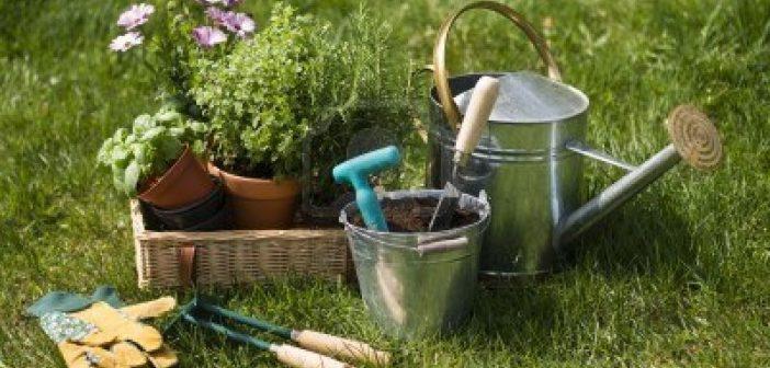 Quel équipement de jardinage choisir et acheter
